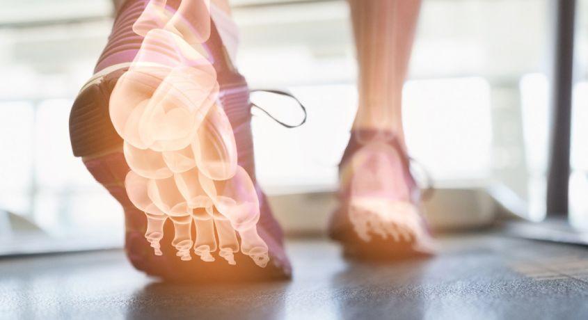 Корректоры для пальцев ног, межпальцевые перегородки и протектор на косточку пальца стопы - на страже здоровья ног человека